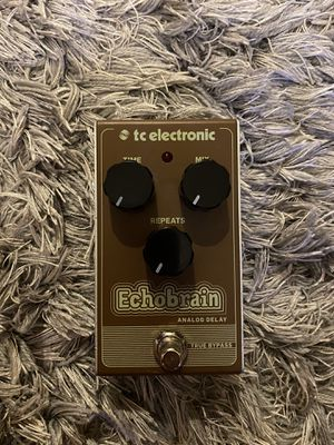 TC Electronic Echobrain Analog Delay Guitar Pedal for Sale in Hollywood, FL