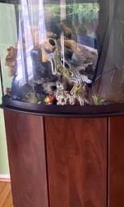 36 gallon bow front aquarium and stand for sale with lots of accessories for Sale in Owings Mills,  MD