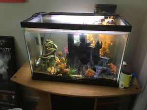 Fish tank and stand $50 for Sale in Kuna, ID