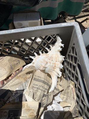 4 crates of aquarium material for Sale in Los Angeles, CA