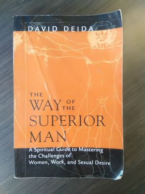 The Way of the Superior Man - A Spiritual Guide to Mastering the Challenges of Women, Work, and Sexual Desire By David Deida for Sale in Houston, TX