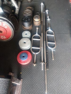 Standard Bars, Curl Bars, and 296.4 lbs of Standard Plates for Sale in Aurora, IL