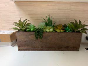 Home Decor Plants for Sale in Hacienda Heights, CA