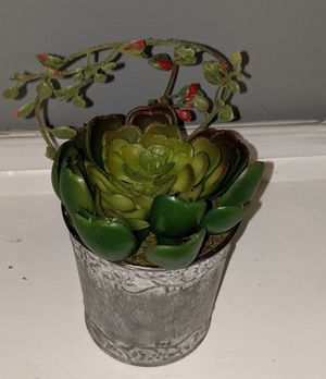 Succulents - (Artificial) for Sale in Shawnee, KS
