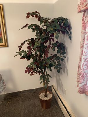 Fake plant for Sale in Yonkers, NY