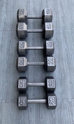 20-40 LB Iron Hex Dumbbell Set for Sale in Riverside, CA