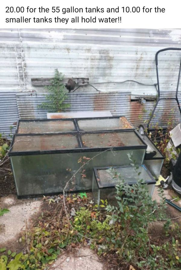 20.00 for the pair 55 gallon and 15 for the pair of 2 ,10 gallon aquariums they all hold water