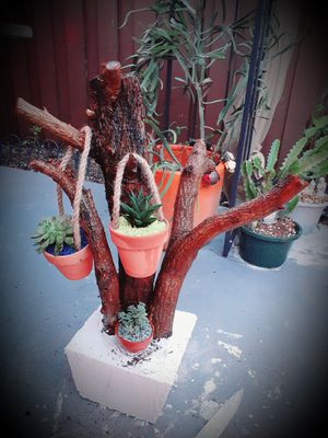 Hermoso arreglos en tronco for Sale in Miami, FL