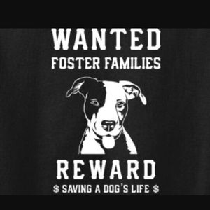 Dog fosters for Sale in Orlando, FL