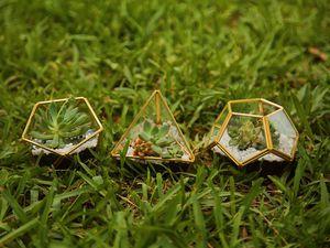 4 Inch Mini Glass Geometric Terrarium for Sale in Miami Lakes, FL
