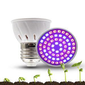 Hydroponic Grow Light for Sale in Cincinnati, OH