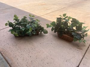 Fake house plants for Sale in Fresno, CA