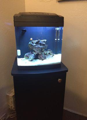 Ceramic Salt water fish tank for Sale in Pittsburgh, PA