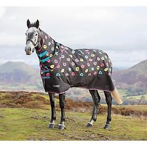 Horse Turnout Sheet And Neck Cover for Sale in Gresham, OR