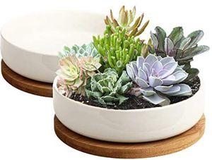 2 White Ceramic Flower Planter 6in for Sale in Las Vegas, NV