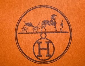 Hermes Authentic Gift Bag for Sale in Houston, TX
