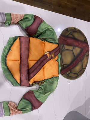 Ninja Turtles Halloween costume 2-4 yr old for Sale in Simpsonville, SC