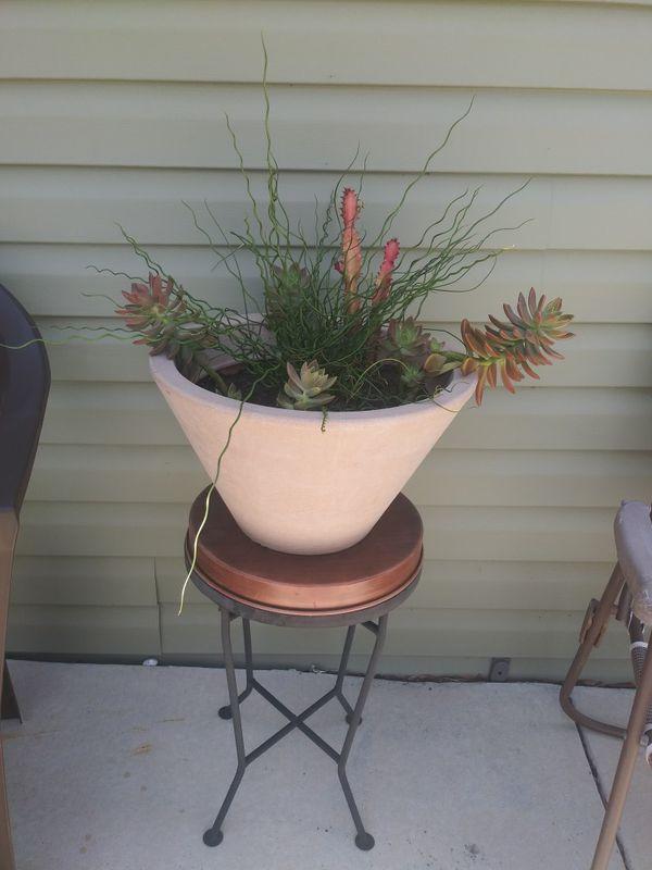 Price drop! Huge succulent bowl