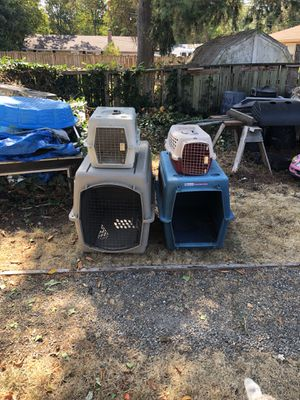 2 Petmate 1 sky kennel cat or dog for Sale in Tacoma, WA