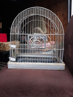 Bird Cage for Sale in Westerville, OH