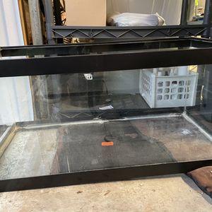 40gal Glass Tank for Sale in Everett, WA