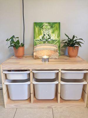 Organizer wood and plastic bins for Sale in Belleair Bluffs, FL