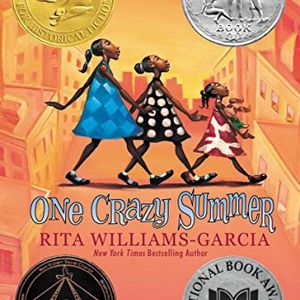 33 Books - Grades 3-5 - One Crazy Summer - Classroom Set for Sale in Forest Park, IL