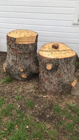 FREE WOOD! for Sale in Redford Charter Township, MI