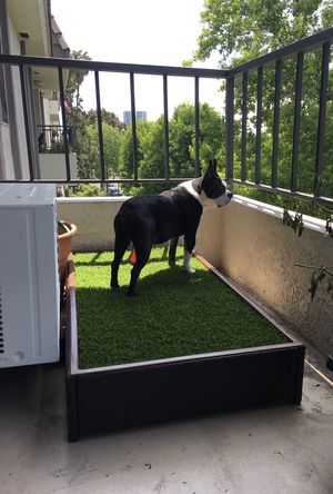 Outdoor grass area for pets for Sale in Seal Beach, CA