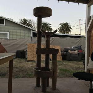 Tall Cat Scratch Post for Sale in Riverside, CA