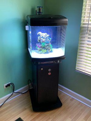 JBJ Nano Cube 28 gallon for Sale in Bartlett, IL