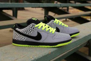 Nike SB Dunk Low for Sale in Long Beach, CA