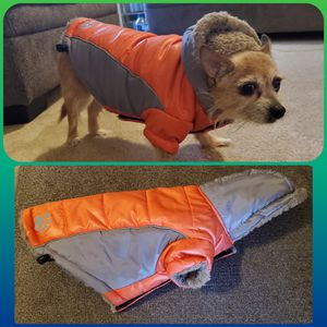 Dog Coat for Sale in Westminster, CO