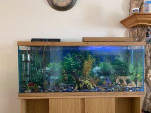 Fish Tank (Pesera) for Sale in Perris, CA