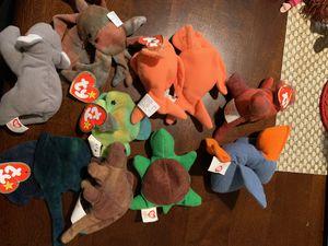 Teenie beanie babies lot for Sale in Austin, TX