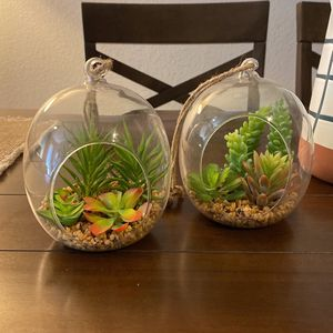 Set Of 2 Hanging Glass Faux Succulent Orbs for Sale in Sloan, NV