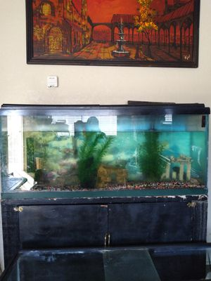 Fish tank 55 galllon for Sale in Pittsburg, CA