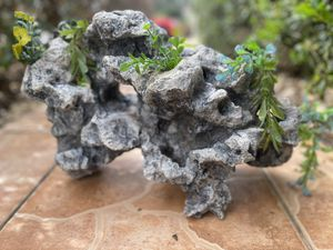 Rock decoration for AQUARIUM with plants and holes LOOKS NATURAL for Sale in Davenport, FL
