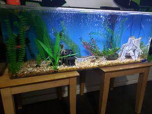 55gal seaclear acrylic fish tank for Sale in Lacey, WA