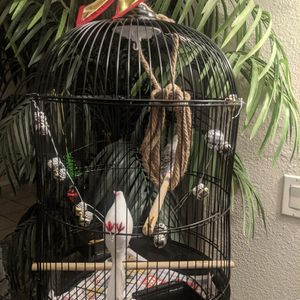 Cute Little Christmas Bird Cage for Sale in Los Angeles, CA