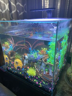 Fish tank for Sale in Leominster, MA