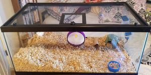 Hamster Huge Home for Sale in Santa Maria, CA