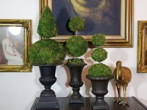 """Custom Moss Topiary 22"""" 20"""" 16"""" inches tall for Sale in Orlando, FL"""