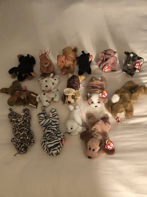 Beanie Babies for Sale in Langhorne, PA