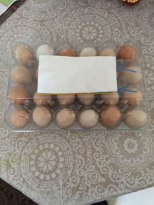 Organic eggs for Sale in Riverside, CA