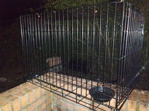 Medium size dog cage for Sale in Clarksville, TN