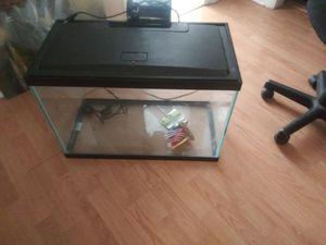 20 Gallon Aquarium with filter for Sale in Tampa, FL