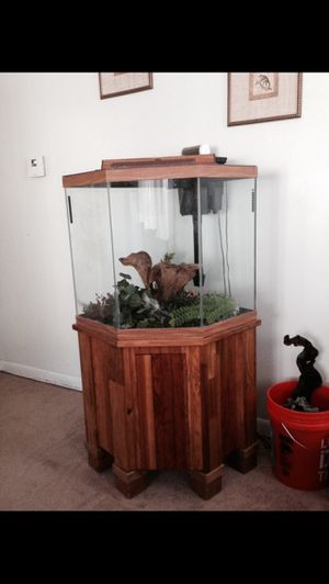 44 pentagon fish tank for Sale in Everett, MA