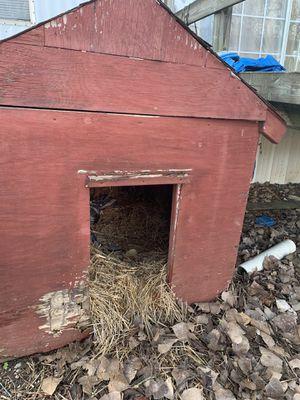 Large dog house for Sale in Nashville, TN