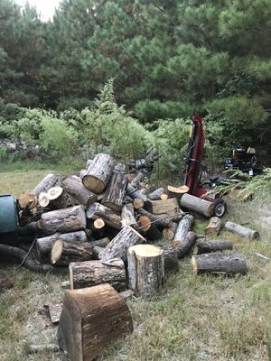 Firewood for sale for Sale in Millsboro, DE
